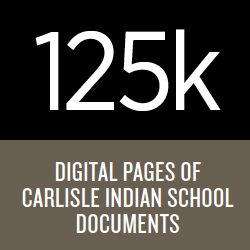 Digital Pages Stats