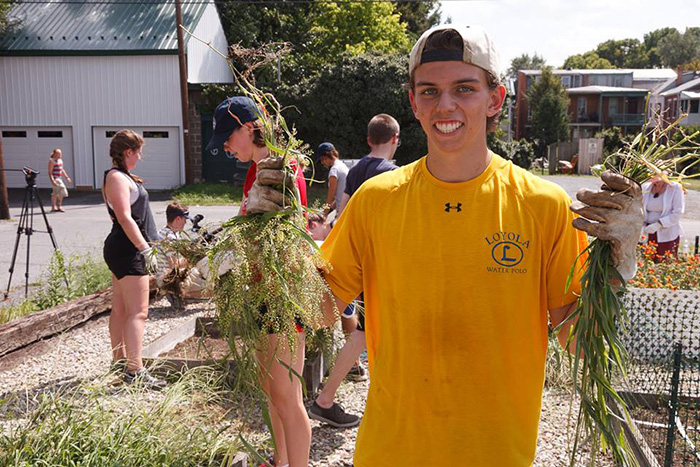 Students volunteered in the community as part of Orientation Week.