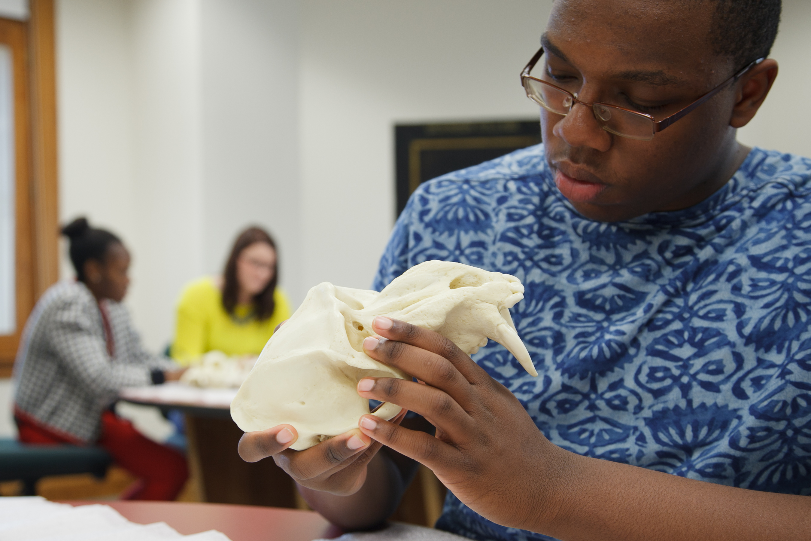 picture of anthropology students studying in the Keck Anthropology Lab