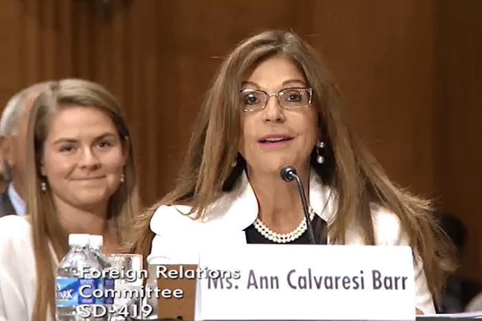 Ann Calvaresi Barr at a government hearing