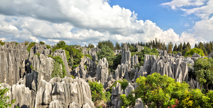 China stone forest in kunming yunnan