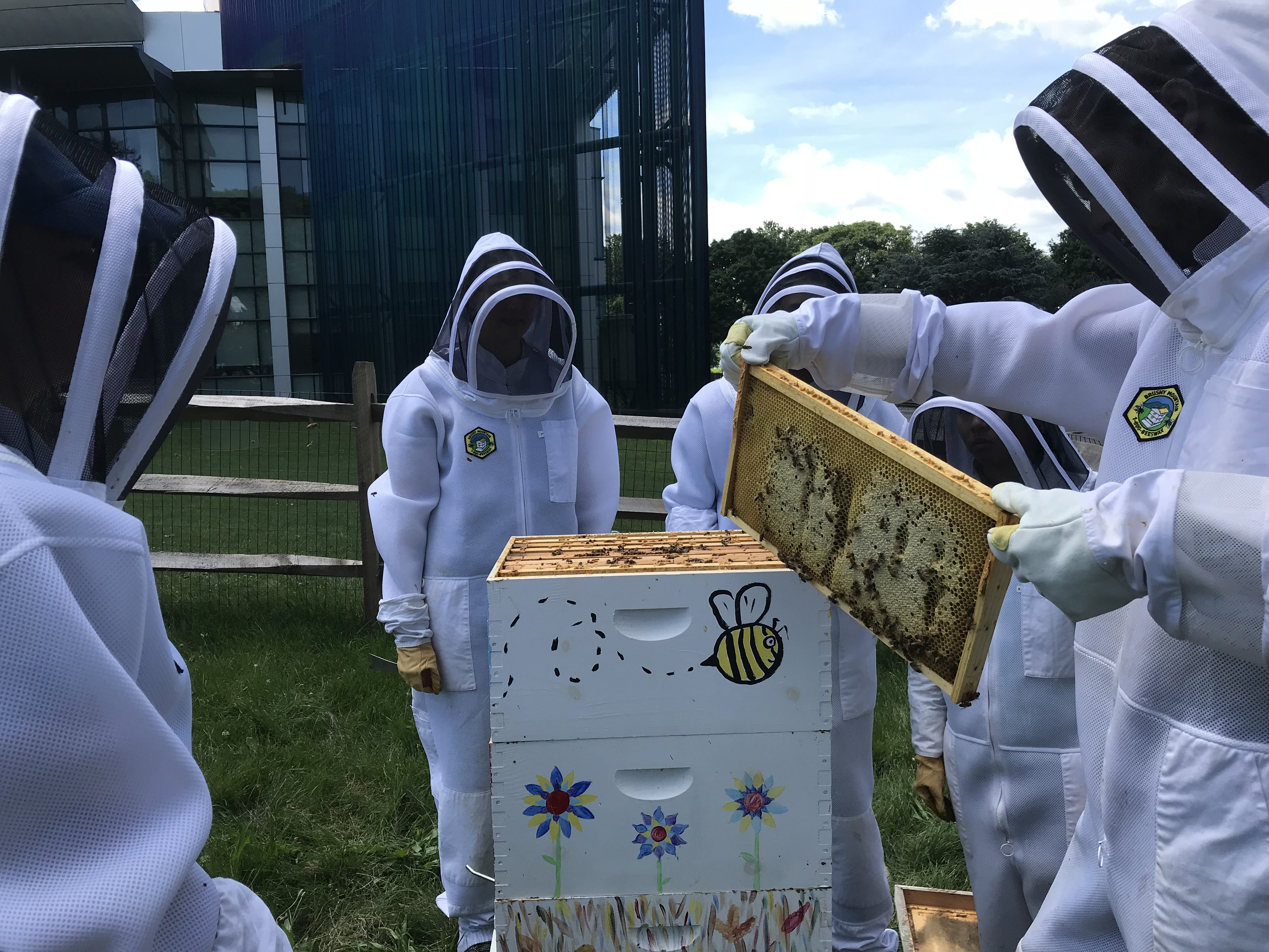 ENST Co curricular activities bee keeping