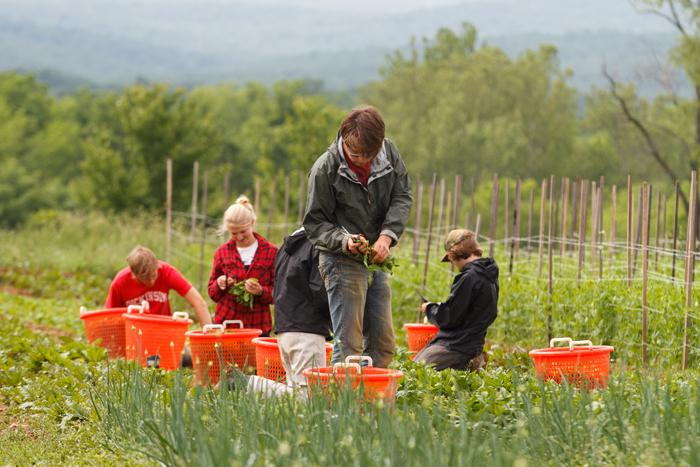 'Parade' magazine highlights the College Farm in its special Earth Day Across America feature.