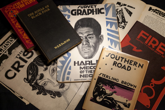 Books from the archives' New Negro collection
