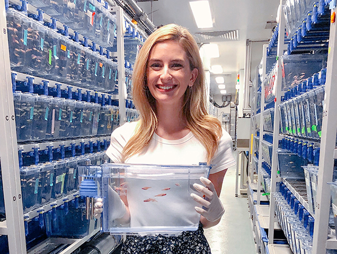 Katie Koczirka '20 is spending her summer as an intern at the Boston Children's Hospital, where she's building her lab techniques and skills while working alongside professional researchers.