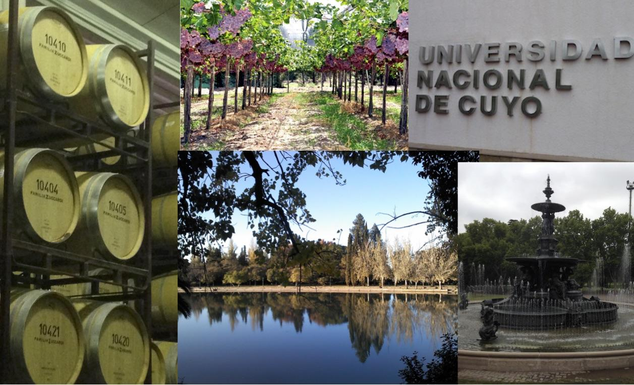 Collage of photos from Mendoza in Argentina