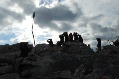 Image of students doing fieldwork