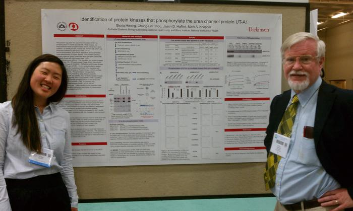 Gloria Hwang '16 with Mark A. Knepper at her presentation at the 2014 Experimental Biology Conference.
