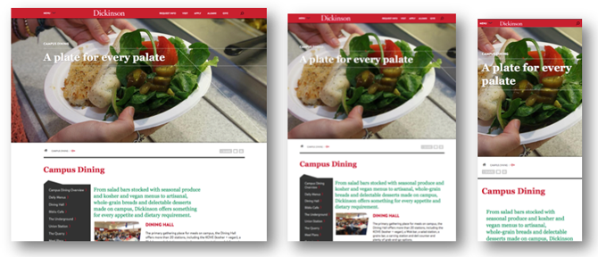 Screenshots of responsive design examples