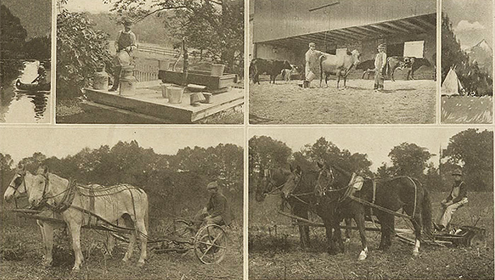 "Postcard caption: ""Students Working on Pennsylvania Farms. Learning by Doing."" Courtesy of Carlisle Indian School Digital Resource Center."