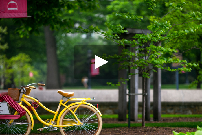 A yellow bicycle stands out among Dickinson's lush green campus.