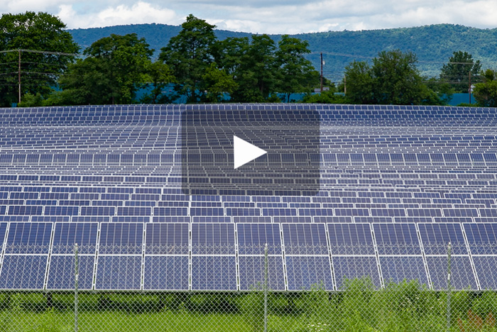 Solar Field Video Image